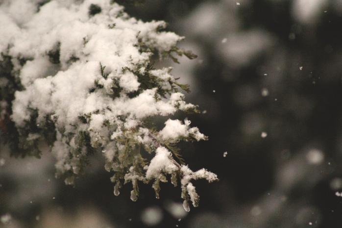 stop-snowing.jpg